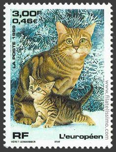 Cats in Philately Vintage Stamps, Vintage Cat, I Love Cats, Crazy Cats, Chat Web, Art Postal, Image Chat, Postage Stamp Art, Stamp Collecting