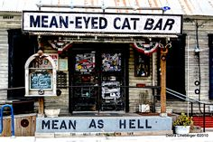 Mean As Hell. The Mean Eyed Cat. Need we say more?