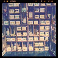 packaging/display