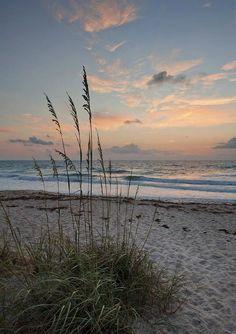 Beautiful Sunrise, Beautiful Beaches, Melbourne Beach, Ocean Beach, Beach Sunrise, Sunrise Florida, Seaside Florida, Nature Beach, Florida Travel