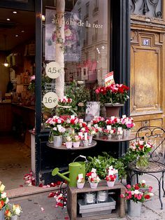 """Two blocks farther on, a flower shop breaks all the Paris black-and-white rules by displaying buckets of red and pink and orange roses in front of the door. They've even strewn rose petals over the pavement."" (from THE PARIS EFFECT) Paris Shopping, Shopping Travel, Flower Market, Flower Shops, Deco Floral, Lovely Shop, I Love Paris, Shop Fronts, My Flower"