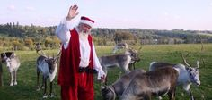 At the Llama Park see Santa in his grotto and meet his reindeer! The shop is full of wonderful clothes and gift ideas! www.llamapark.co.uk