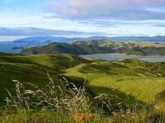 The road to Coromandel from Auckland is very scenic, 2 hours or so depending on your speed - it is certainly a leisurely driving experience. There are a few pit stops and shops on the side of the road so it's important to have enough petrol and travel food - chips or drinks.  http://admiraltylodge.co.nz