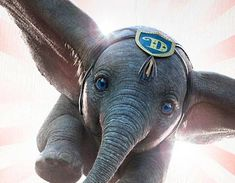 Disney's Live-Action Dumbo Trailer Soars to New Heigh Disney Pixar, Disney Live, Disney Art, Disney Movies, Dumbo Disney, Disney Ideas, Walt Disney, Tim Burton, Disney Address