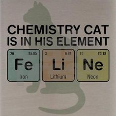 chemistry cat - Google Search                                                                                                                                                     More
