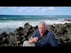 David Attenborough's Galapagos David Attenborough's Galapagos Episode 2 ...
