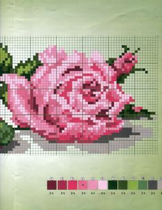 Gallery.ru / Фото #33 - розы разные - irisha-ira