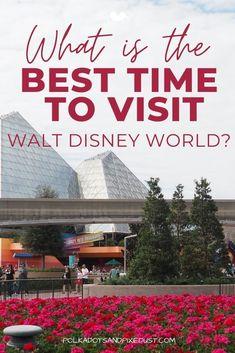 Disney World Parks, Disney World Planning, Walt Disney World Vacations, Disney Trips, Disney Snacks, Disney World Tips And Tricks, Disney Family, Crowd, Pixie
