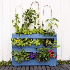 Create your own pallet garden Easy Projects, Craft Projects, Garden Makeover, Cool Magazine, Upcycled Crafts, Outdoor Spaces, Pallet, Create Your Own, Planter Pots