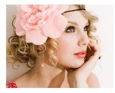 I love Taylor Swift's big hair flower