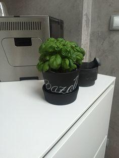 black flower pot