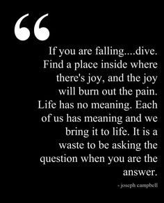 """""""Life has no meaning. Each of us has meaning and we bring it to life. It is a waste to be asking the question when you are the answer."""" Love."""
