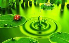 Groene-achtergronden-groen-achtergrond-groene-wallpapers-hd-22