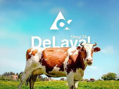 But first let us tell you about our next project DeLaval Shop 24. The website for DeLaval company made together with Pingbull. The huge solution with a big amount of hidden functionality for authorized resellers. An internal email campaigns webshop custom CMS - everything you need to sell products B2B and B2C. The project is the solution developed on CodeIgniter and hosted on Amazon Web Services. WebCodium improved existing project with a huge amount of additional functionality and supports…
