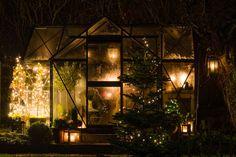 My loving home and garden: Junior Orangeri