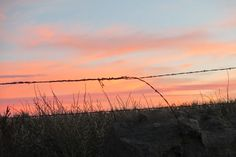 Pink sky behind barbed wire on Linda's farm near Delta, Colorado.