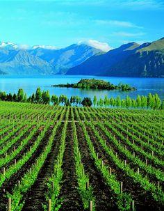 Lake Wanaka, New Zealand. Need longer here next time!