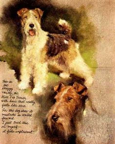 Wire Fox Terrier - Vintage Dog Art Print - Not as good as the real thing, but possibly breaks wind less often !