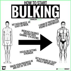 HOW TO START BULKING! Hit each muscle Your muscles usually recover afte… HOW TO START BULKING! Hit each muscle Your muscles usually recover after hours, therefore its time to hit them again. The more stimulation each muscle… Continue Reading → Gym Workout Chart, Gym Workout Tips, Fun Workouts, 300 Workout, Gym Tips, Workout Exercises, Workout Schedule, Workout Routines, Workout Challenge