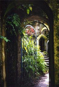 los pozas, mexico | Los Pozas Gardens Mexico
