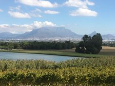 Beautiful views from De Grendel wine estate, Cape winelands Cape Town, South Africa, Birth, Magic, Wine, Mountains, Nature, Travel, Beautiful