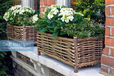 Willow basket window boxes To Make Window Boxes Willow Furniture, Rustic Furniture, Garden Furniture, Willow Weaving, Basket Weaving, Garden Deco, Garden Art, Twig Crafts, Wooden Garden