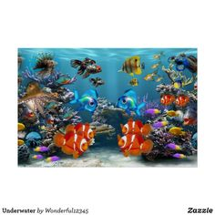Cleaning & Maintenance 50 X 30cm Stunning 3d Dolphin Coral Sea Poster Fish Tank New Fashion Aquarium Background