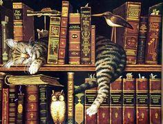 Tres coisas legais: livros, gato e coruja.