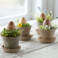 Wooden Egg and Pot Placecards   
