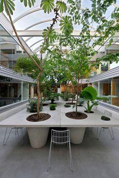 Atrium Table - anouk vogel------- no need for an umbrella! Green Architecture, Landscape Architecture, Landscape Design, Garden Design, Interior Garden, Interior Plants, Outdoor Landscaping, Outdoor Gardens, Atrium Design