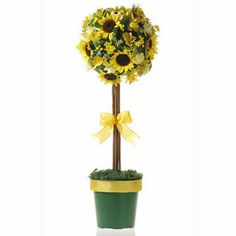 Topiary Tree   Craft Ideas & Inspirational Projects   Hobbycraft