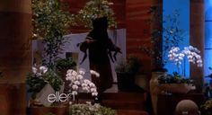 Then Sean Hayes with this haunted tree.   45 Moments That Reminded Us How Much We Love Ellen DeGeneres In 2013