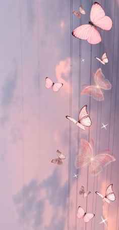 butterfly wallpaper in 2021 | Beautiful wallpapers backgrounds, Pink wallpaper backgrounds, Purple wallpaper phone