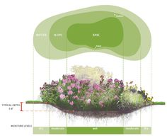 STORM WATER MANAGEMENT (Infiltration & Recharge) - Rain Garden - Designed to drain quickly, will use typical landscaping plants & soils. Multiple small rain gardens operate better than on large rain garden. Typically used in Residential areas