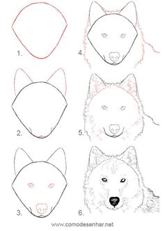 how to draw a wolf - Drawing Tips Pencil Art Drawings, Art Drawings Sketches, Easy Drawings, Animal Sketches, Animal Drawings, Drawing Animals, Horse Drawings, Dog Drawing Tutorial, Wolf Sketch