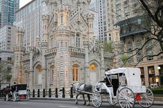 Things to Do in Chicago | Romantic Things to do in Chicago - Horse and Carriage Rides ...
