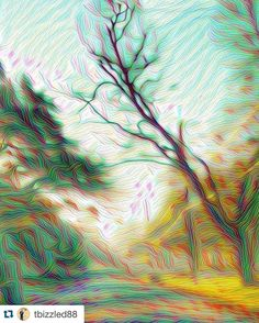 #Repost @tbizzled88  Deep Dream Art... #turbulentflow #deepdream #deepdreamart #morning #trees #creepytree #blueskies #bluesky #nature #instanature #wavylines #dreamdeeply #morningrays #tingeofpink #streetview #artistic #deadtree #winter #wintertrees #branches #talltree #longtree #treestuff #treehashtags #likeapainting #whispy by google_deep_dream