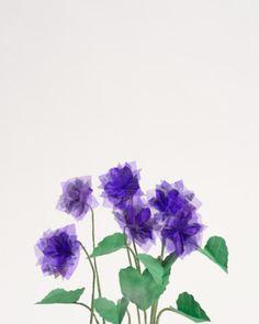 """Veillchen I,2015, Origami-Blumen, FineArtPrint"""