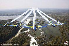 Esquadrão de Demonstração Aérea (Esquadrilha da Fumaça)