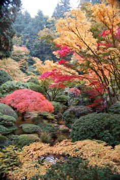 Jardins inspiradores - Jardinagem - iG Em todas  as épocas do ano, po POrtland Japanese Garden se apresenta como um belo cenário.