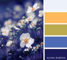 Love the Blue-Violet Colour Pallette, Colour Schemes, Color Trends, Color Combos, Color Balance, Color Harmony, Color Blending, Color Mixing, Style Deco