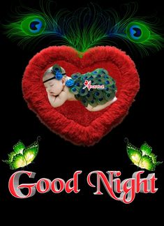 Good Morning Roses, Good Night, My Arts, Christmas Ornaments, Wallpaper, Holiday Decor, Nighty Night, Have A Good Night, Christmas Ornament