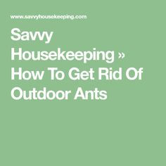Savvy Housekeeping » How To Get Rid Of Outdoor Ants