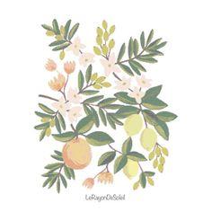 Naranjas y limones con flores silvestres patrón punto de cruz - decoración para cuadros - motivo para mantel servilletas té.