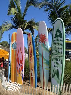 Surf Boards with a Palm Tree background in San Diego Ca. Palm Tree Quotes, Palm Tree Background, Background Quotes, Tree Wallpaper Iphone, Iphone Wallpapers, Pine Tree Silhouette, California Palm Trees, Pine Tree Tattoo, Real Christmas Tree