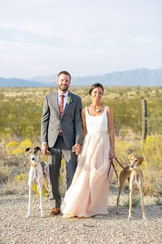 Wedding Tradition :: Including your pets in your wedding. Photo: The Nichols