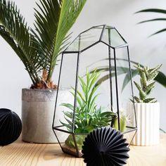 Quartz terrarium & honeycomb balls #botanical #browsehouse #housedoctor