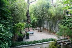 general inspiration image, bamboo shade garden