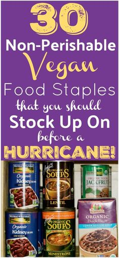 Vegan Non-Perishable Food Items - - A list of 30 non perishable food items that should be on your hurricane food supply list + what to pack in your emergency kit in case of a natural disaster or hurricane evacuation. Best Survival Food, Emergency Preparedness Food, Hurricane Preparedness, Emergency Food Supply, Emergency Supplies, Hurricane Evacuation, Survival Tips, Emergency Preparation, Survival Supplies