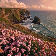 Unique All Over Nature, Landscapes Prints: www.shop Unique All Over Nature, Landscapes Prints: www. Nature Aesthetic, Travel Aesthetic, Summer Aesthetic, Adventure Aesthetic, Aesthetic Indie, Flower Aesthetic, All Nature, Pink Nature, Nature Beach